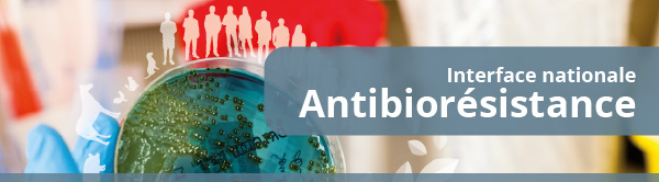 Interface nationale Antibiorésistance